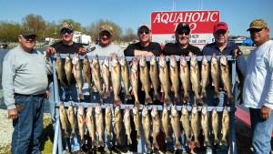 aquaholic-fish-board-04
