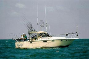 pirate-charter-boat_opt