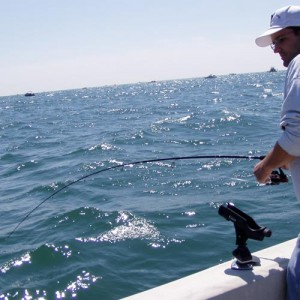 fishing-charters-fun_28